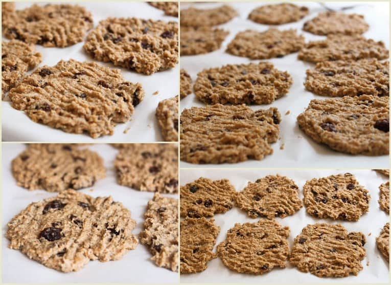 Oatmeal, Raisin, Coconut, and Chia Seed Cookies — The Picky Eater: A ...