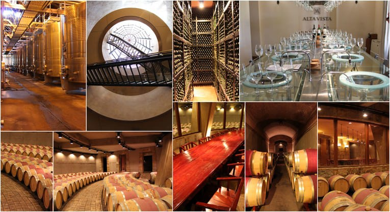 Mendoza wineries