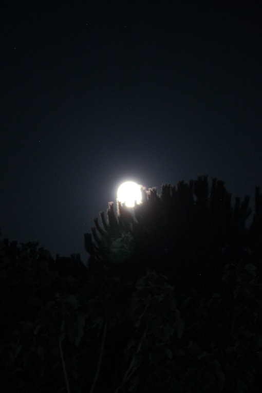 2 - Capofaro Night2