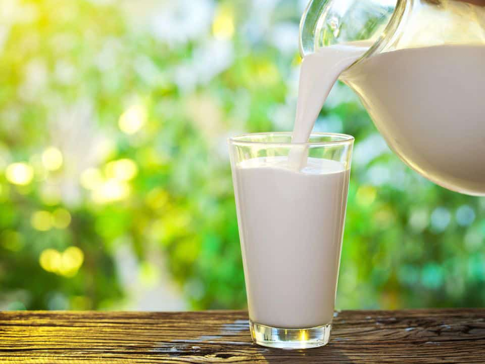 photo of a glass of milk - benefits of organic milk