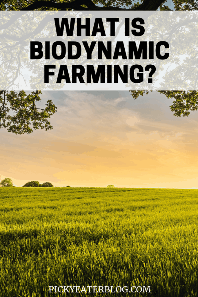 What exactly is biodynamic farming? This post breaks down the benefits, as well as the differences between biodynamic farming and organic farming!