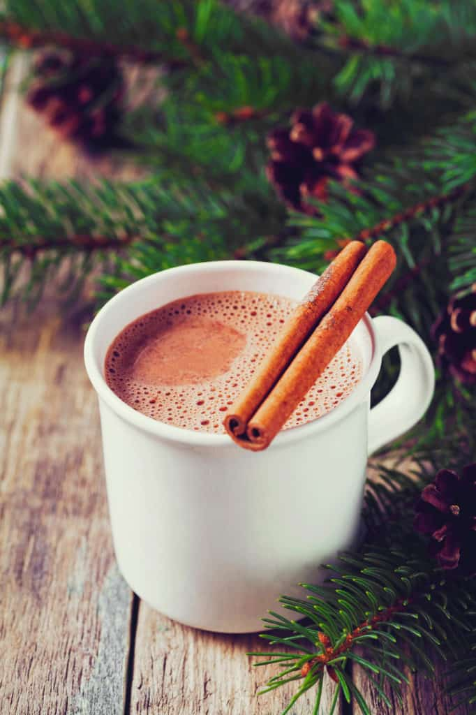 healthy hot chocolate with cinnamon, pictured in a white cup with a cinnamon stick on top