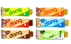 dang bar organic - best vegan protein bars