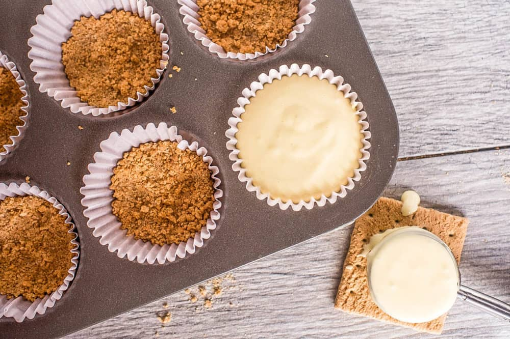 graham cracker crust and cheese filling in muffin tins
