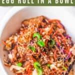 vegetarian egg roll
