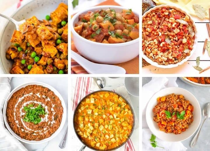 assortment of vegetarian indian recipes - curries, tikka masala and more!