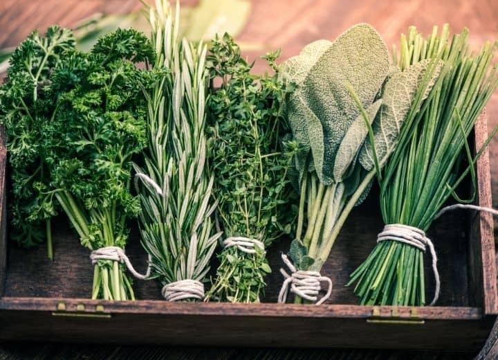 fresh herbs bundled together in brown garden box