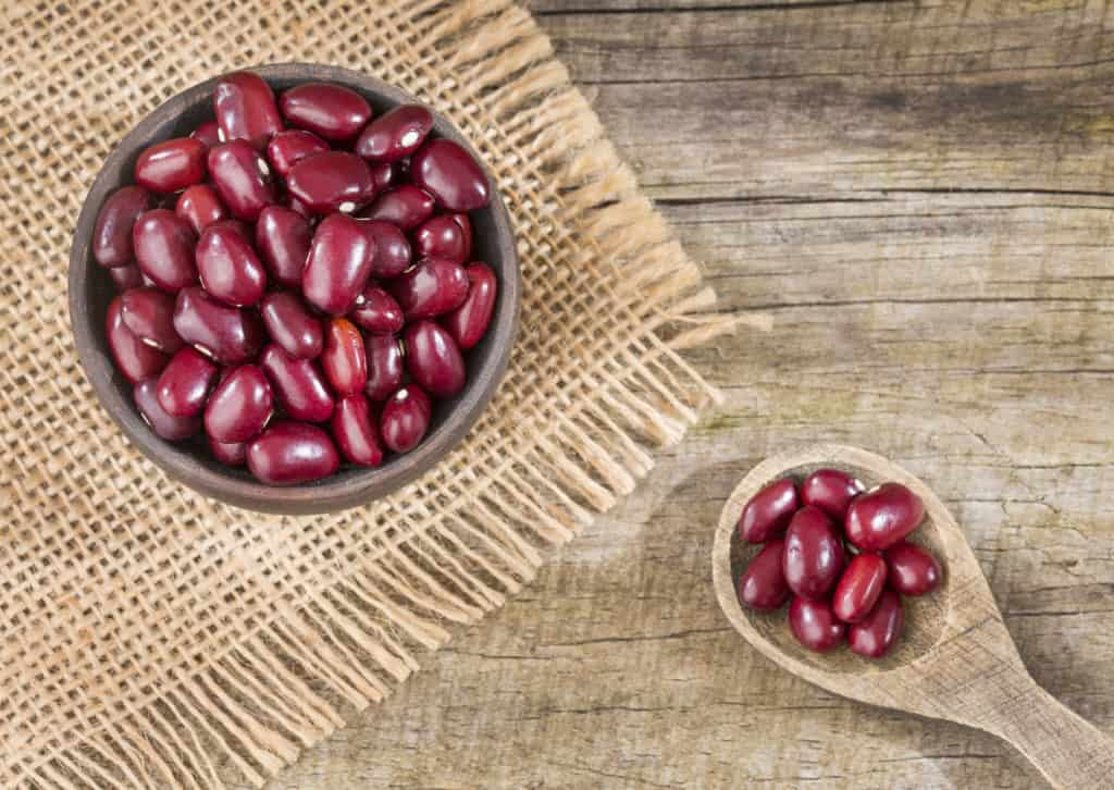 Raw red adzuki beans - Phaseolus vulgaris