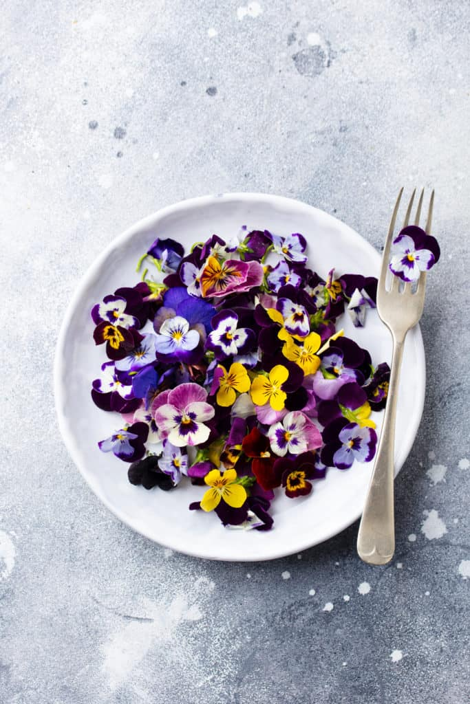 Edible flowers, field pansies, violets on white plate. Grey background. Top view.