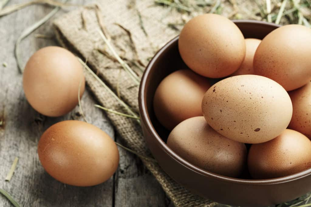 eggs on a plate - foods that start with e