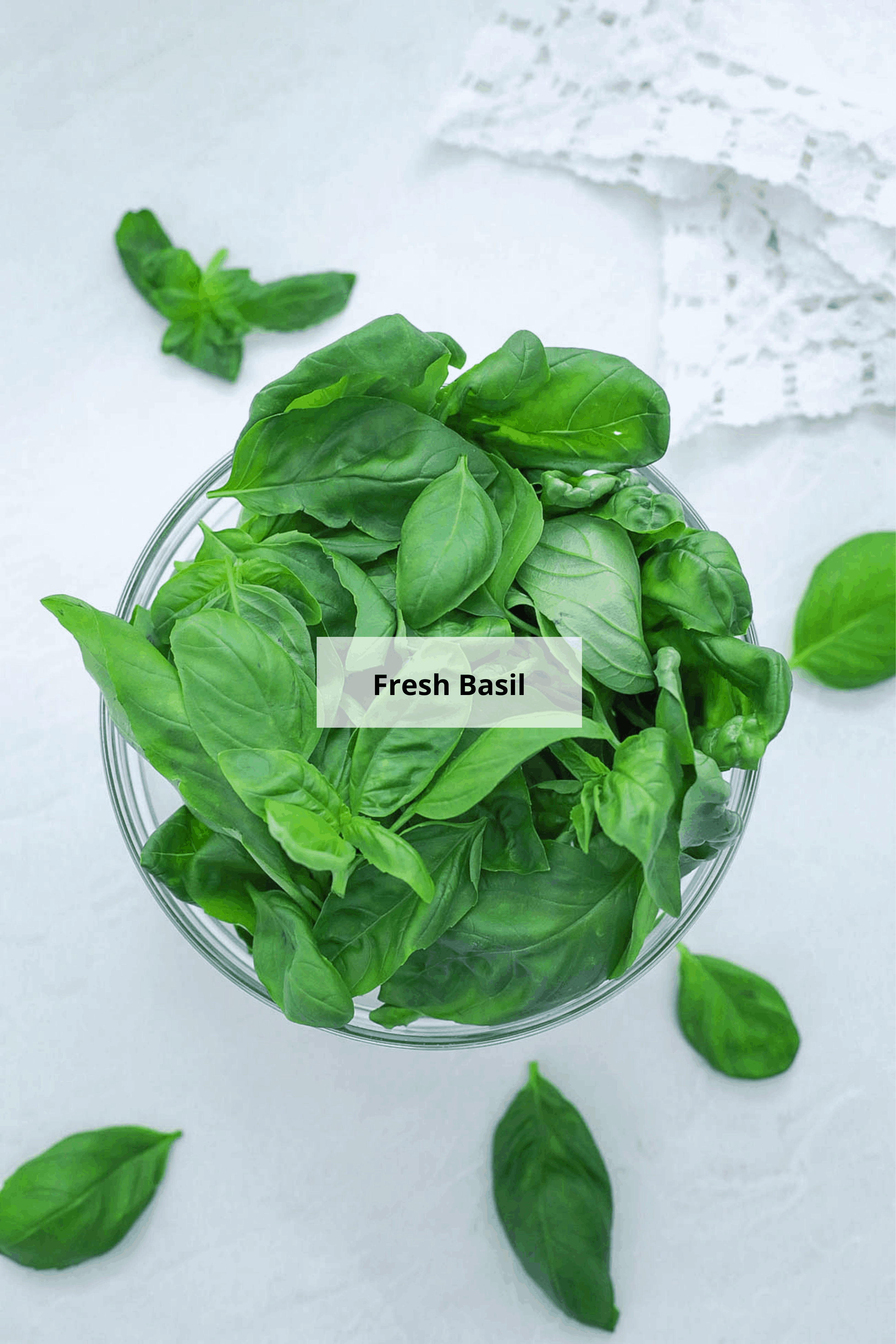 how to dry basil - ingredients