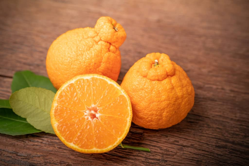 Orange fruit with orange slices and leaves in Wooden background, Dekopon orange or sumo mandarin tangerine with leaves on Wooden background. - foods that start with d