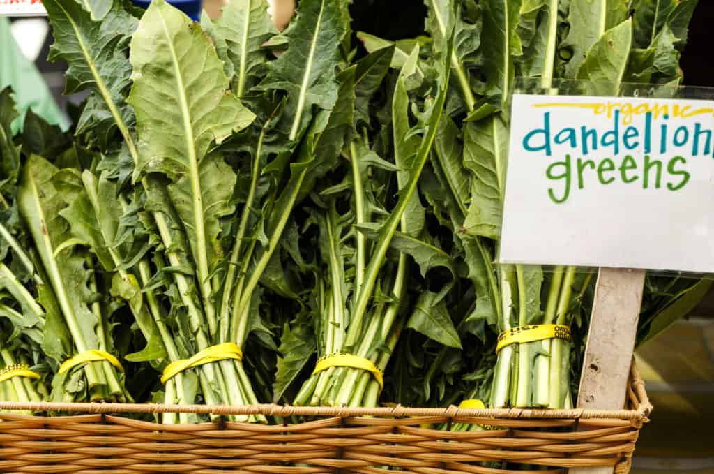 Bunches of Dandelion Greens at a Local Farmer's Market